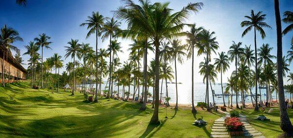 Hon Thom Insel - Resort