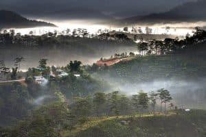 vietnam monsun wetter klima