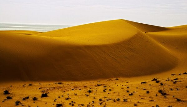 Cát Bay Sand Dünen